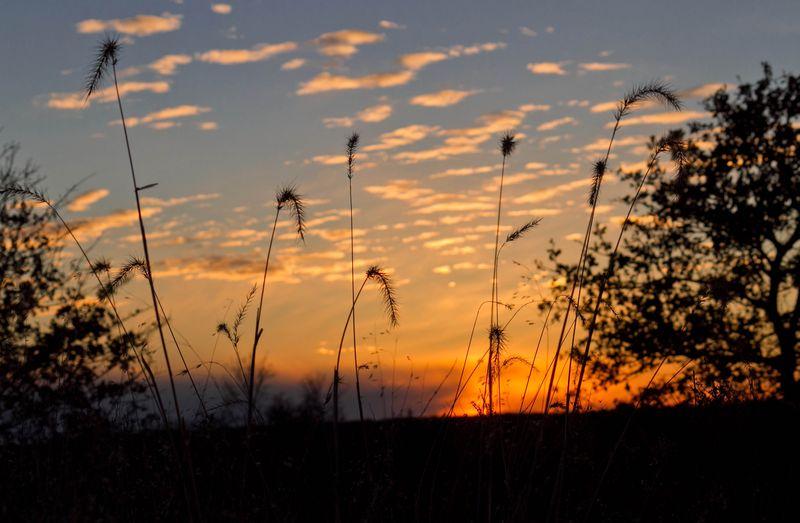 Memorable Sunset-6134