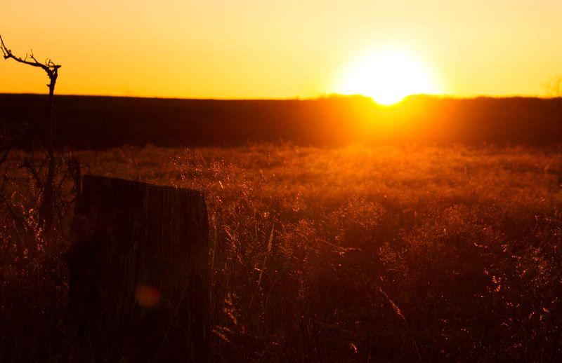 Sunset-6332