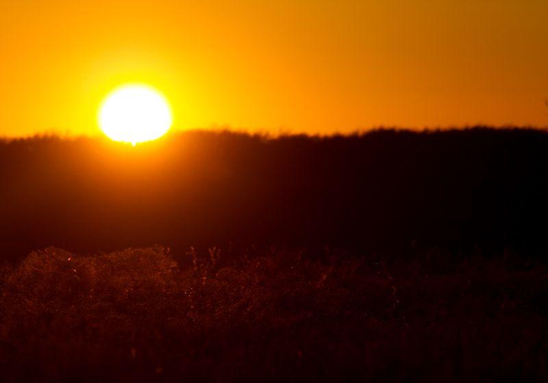 Sunset-6337