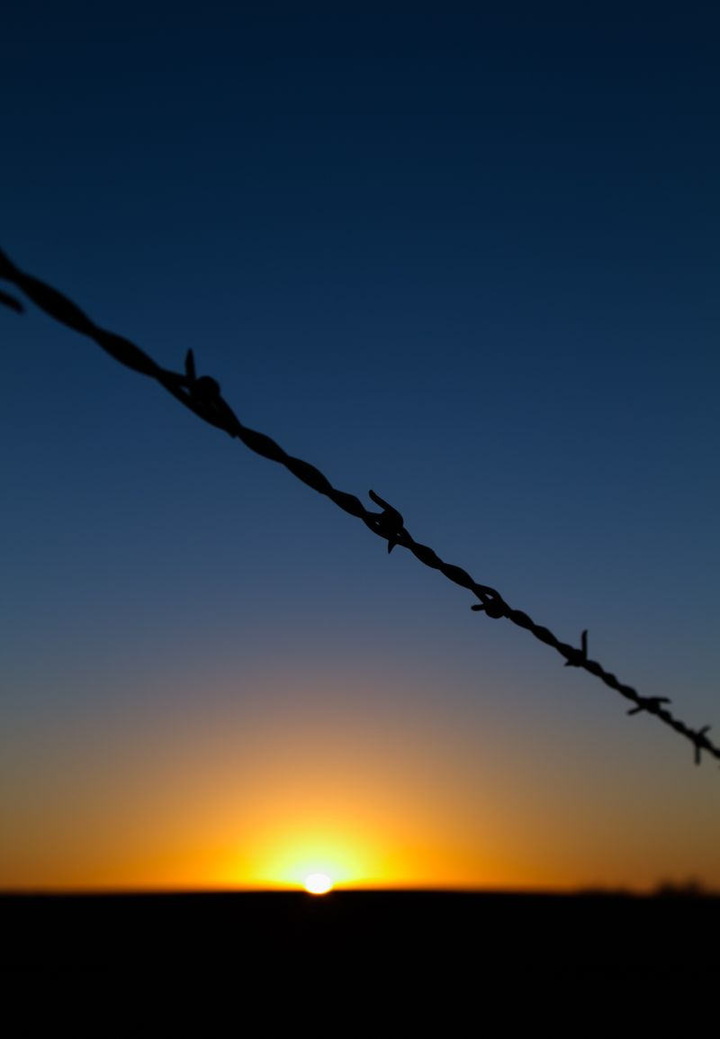 Sunset and barbed wire 2-6532