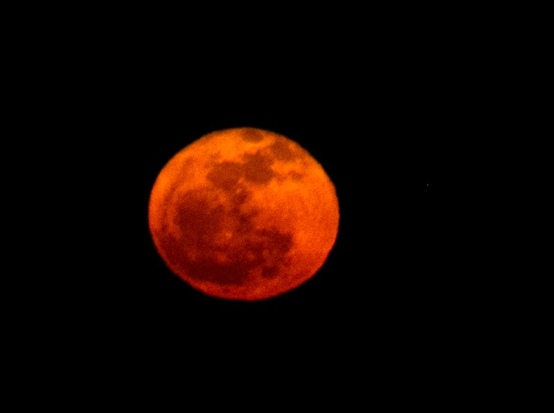 Red Moon-6879