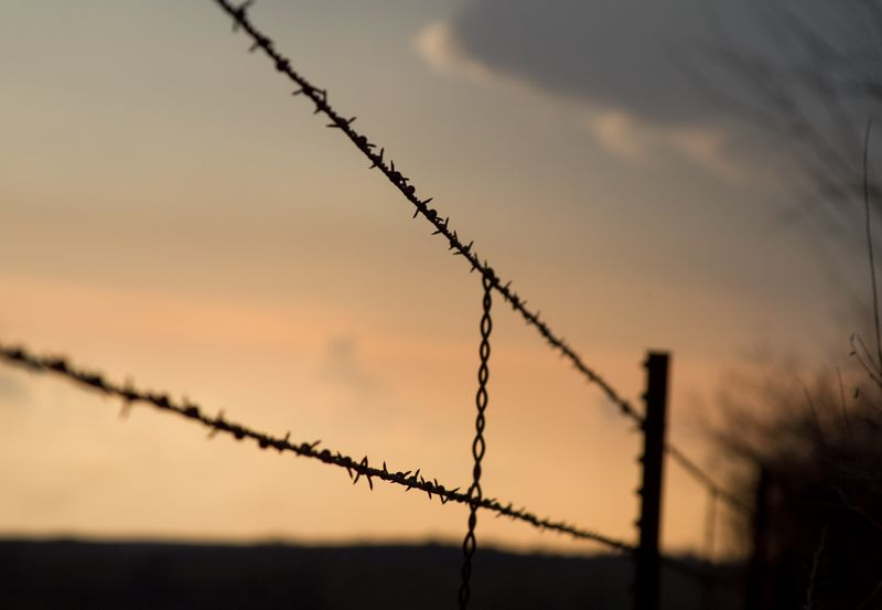Barbed wire-9020