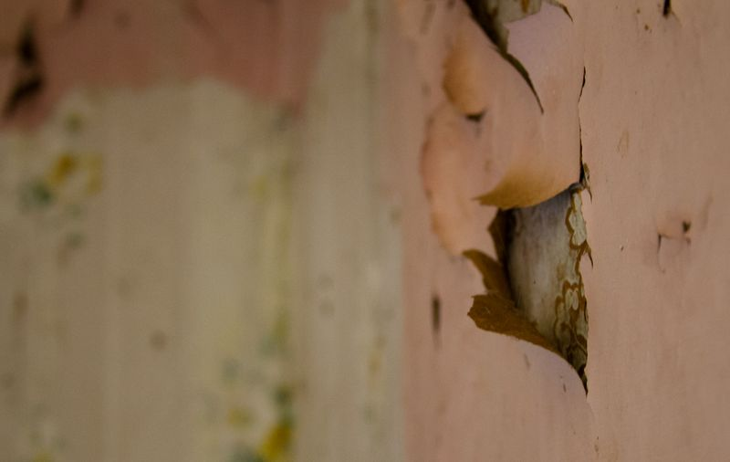 Peeling paint in an abandoned house-1183
