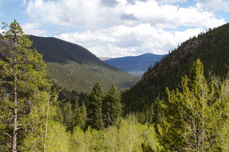 Colorado Rockies-5500