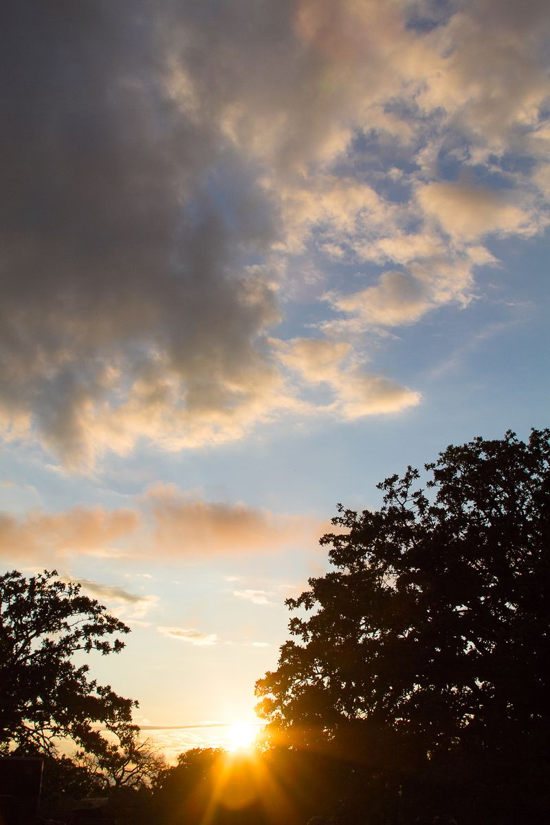Before the Sunset-8818