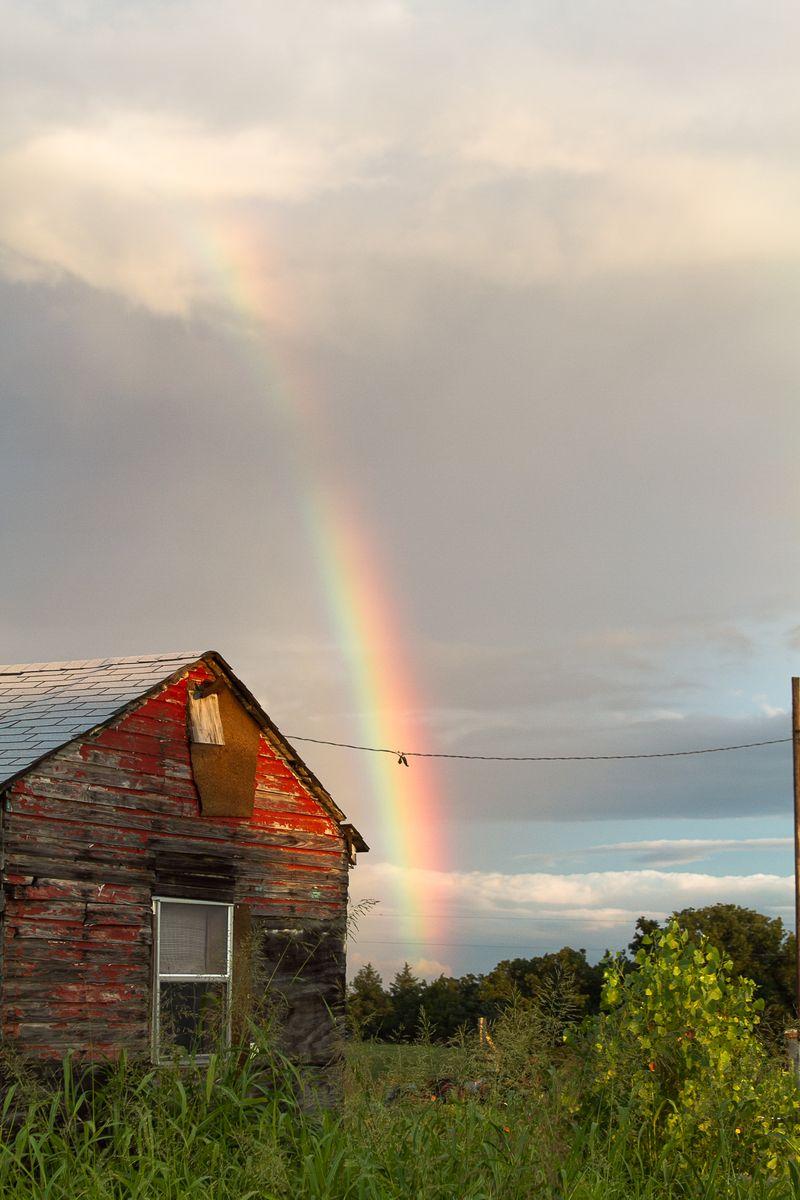 Rainbow and the barnhouse-8821