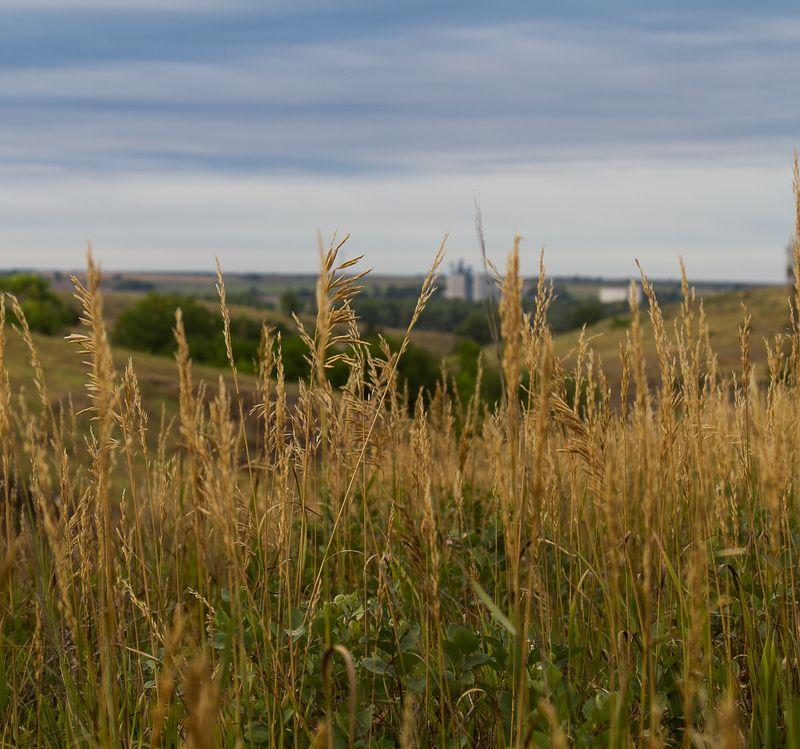 View of Edison Nebraska -9469