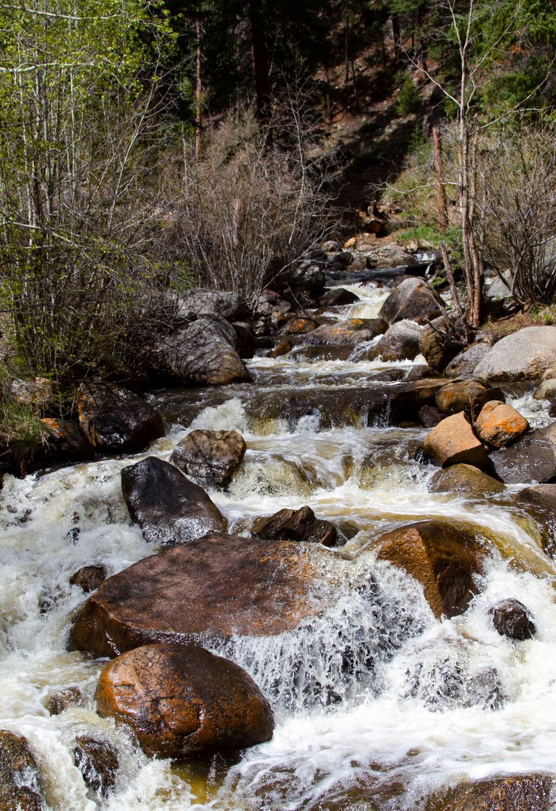 Guanella Pass mountain stream-5440