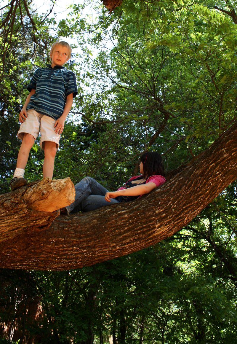 Justin_Grace_in_tree