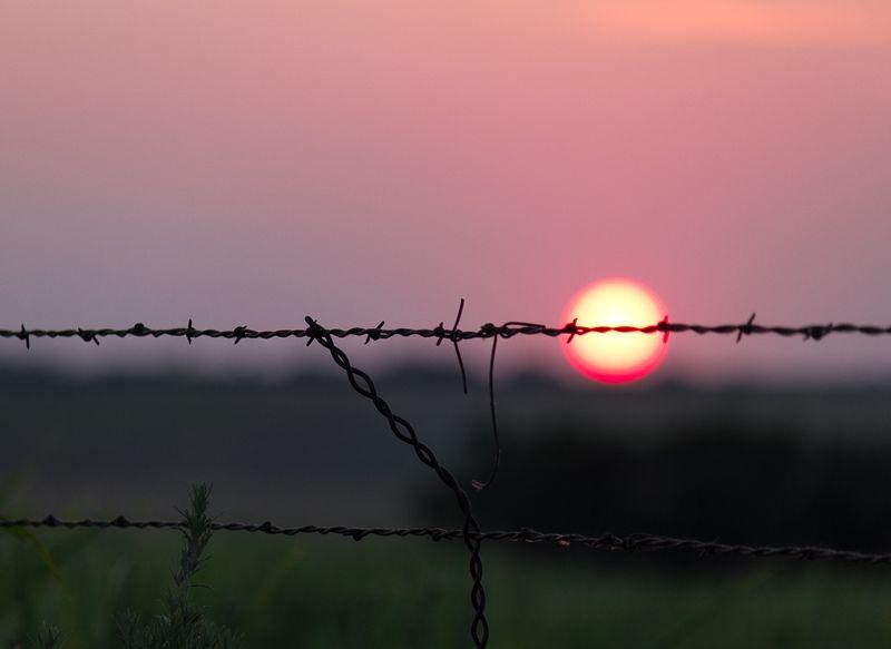 Oklahoma Sunset  by Joy Franklin Photography-8299