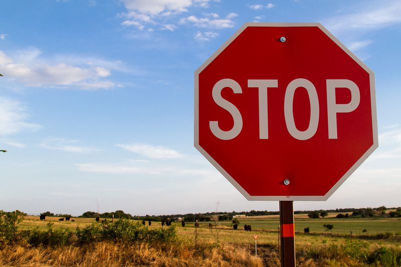 STOP for Cows -8594