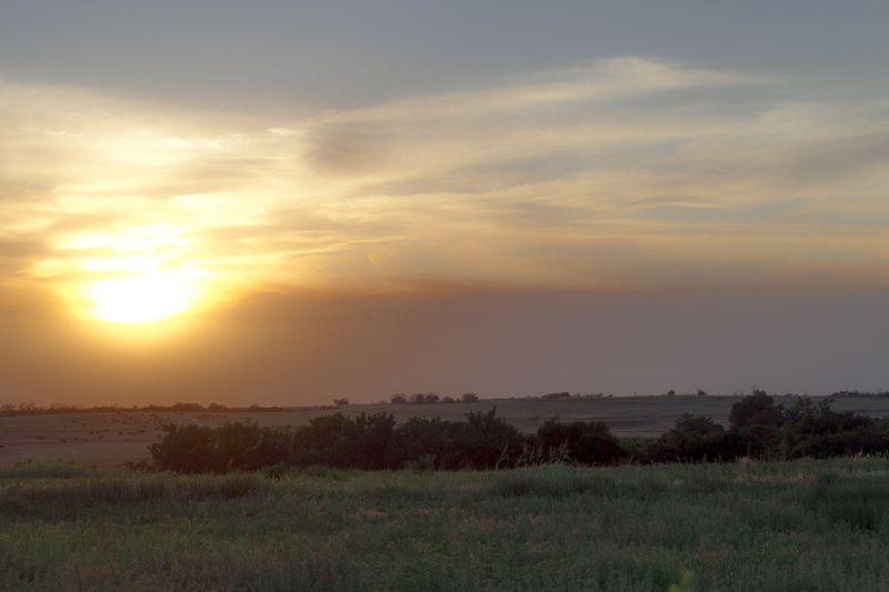 Soft Sunset -8644