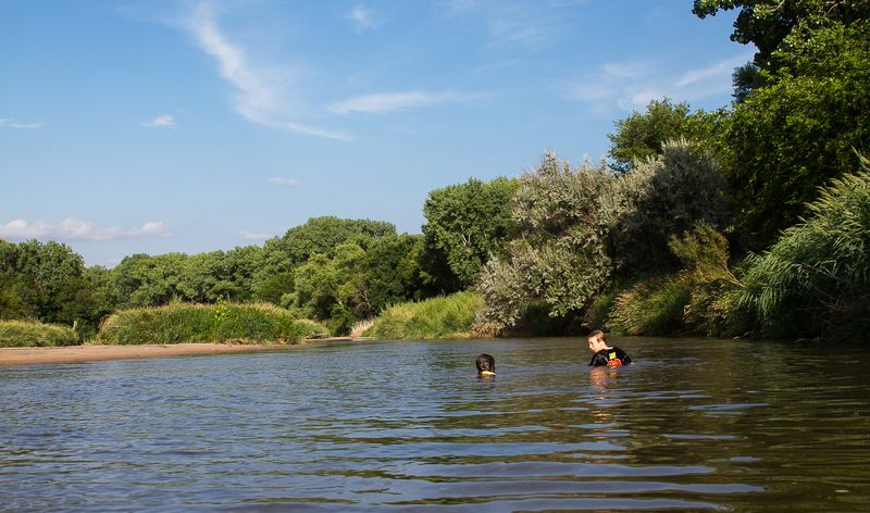 Swimming in the Republican River near Bloomfield Nebraska-0834