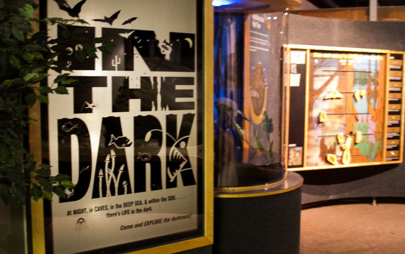 The Hastings Museum -0229