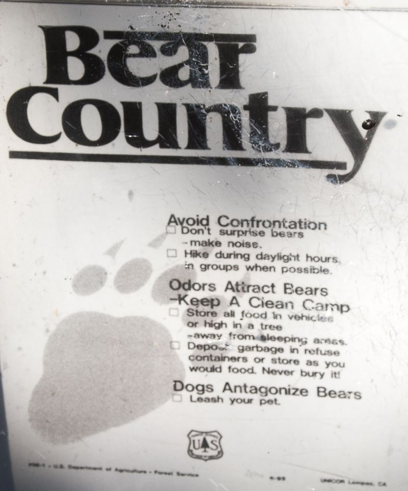 Bear Country-1639