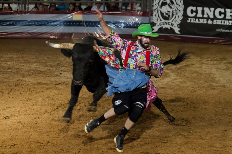 Bullfighting in Ardmore-3093