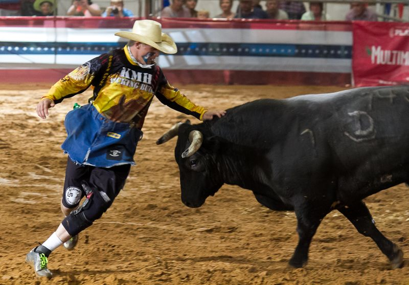 Bullfighting in Ardmore-3080