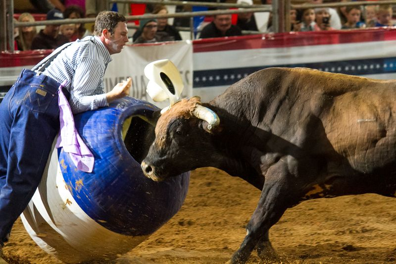 Bullfighting in Ardmore-3232