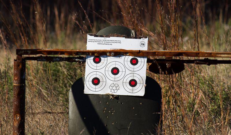Target Practice-4994