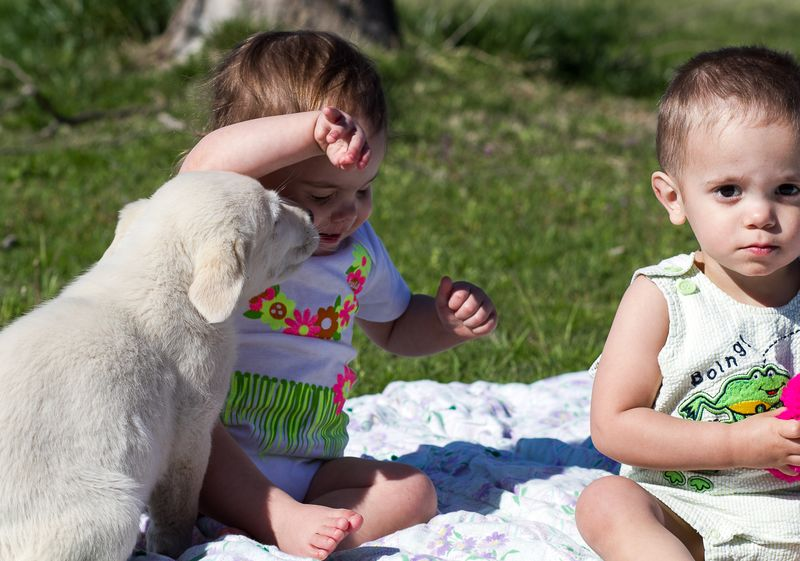Twins and Puppies-1037