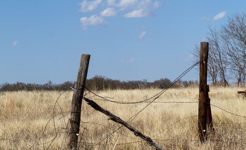 March 31 2014 Back Pasture walk-0907