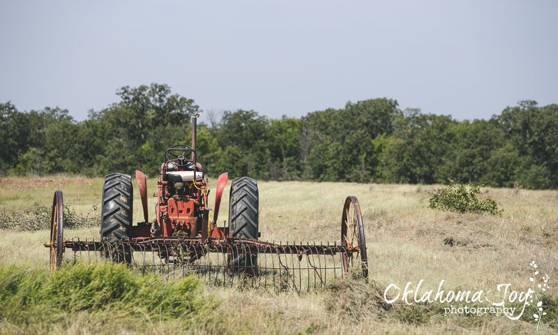 20140823-IMG_4456Tractor in the back pasture