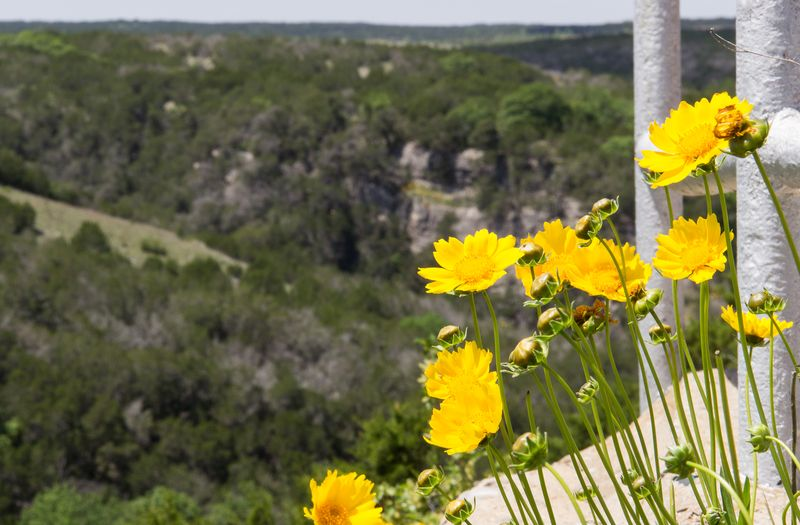 Turner Falls in the Arbuckle Mountains Davis Oklahoma -8285