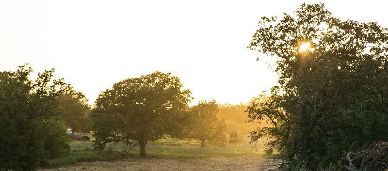 20140819-IMG_3811sunset on the farm