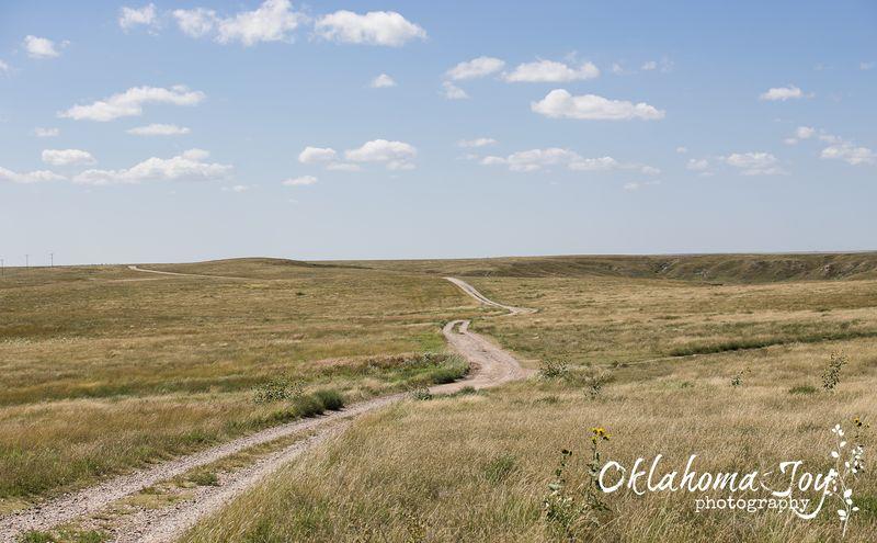 Big Basin Prairie Preserve in SW Kansas -8659