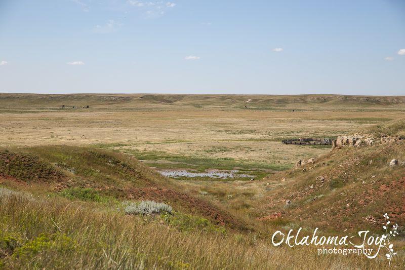 Big Basin Prairie Preserve in SW Kansas -8498