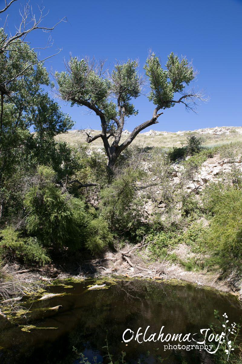 St. Jacob's Well in the Big Basin Prairie Preserve-8529