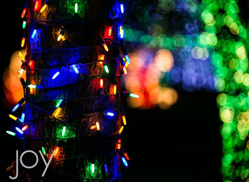 Festival of Lights in Chickasha 2014-6258