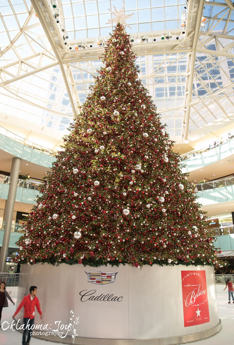 Dallas Galleria at Christmas -1-10