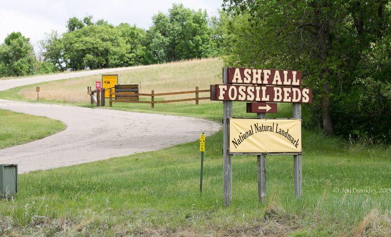 Ashfall State Park in Nebraska -2403