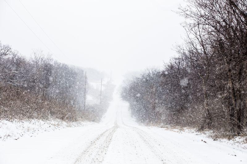 February 27 snow-5870