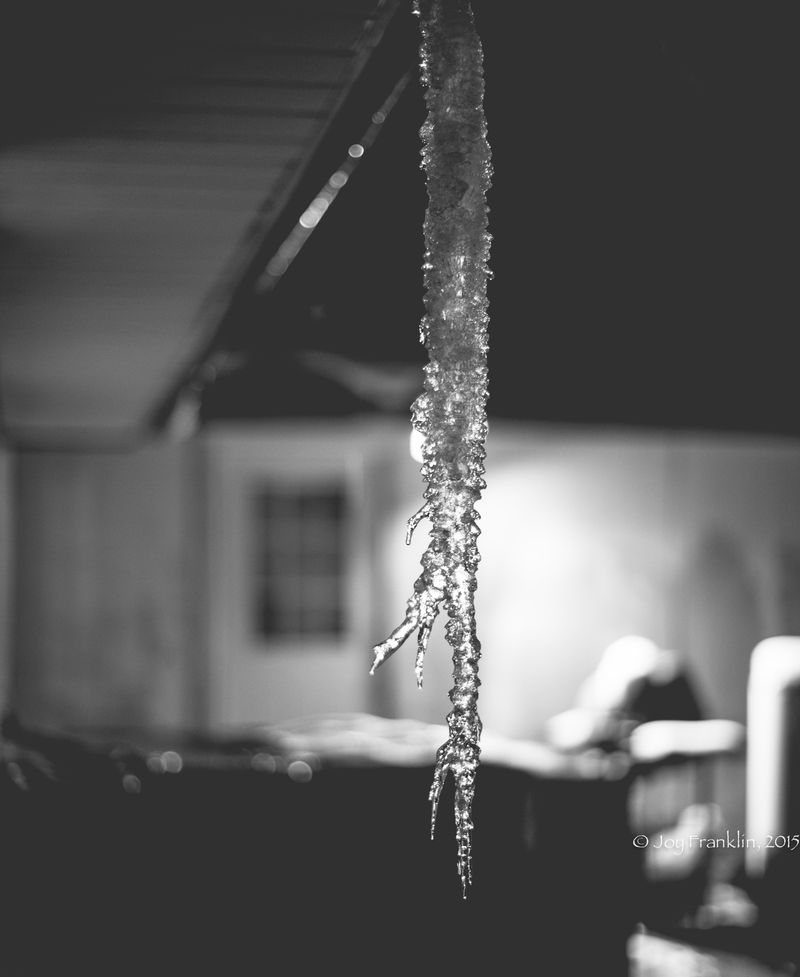 Ice on March 1st 2015 by Joy Franklin-6310