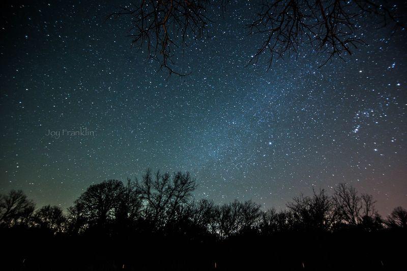 March Stars-7182