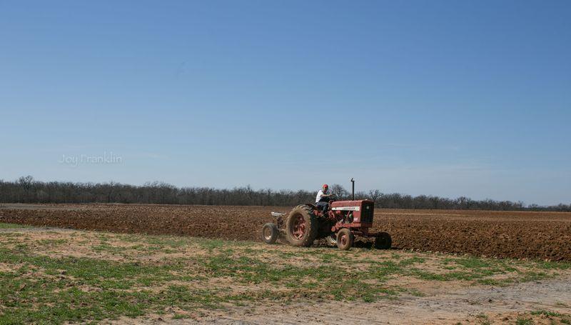 Daddy Farming March 24 2015-8331