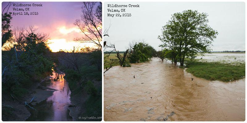 Wildhorse Creek Flooding