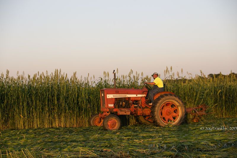 Steve Cutting Hay on the Farm -1-5