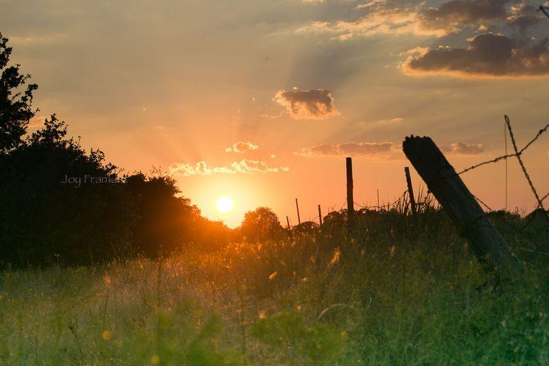 Sunset -1-4