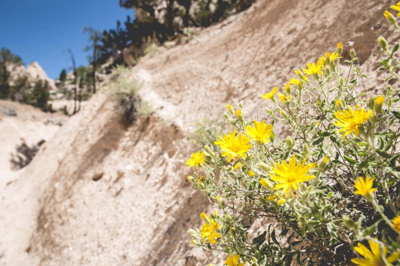 Kasha-Katuwe Tent Rocks National Monument New Mexico-1-6