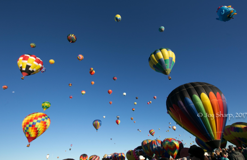 Balloon Fiesta New Mexico Albuquerque-1-7