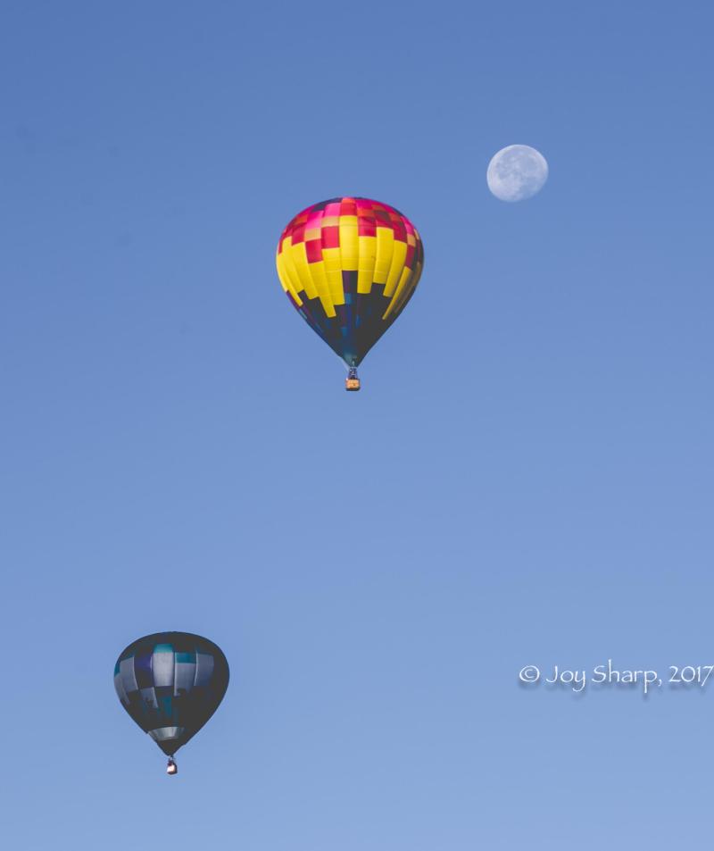 Balloon Fiesta New Mexico Albuquerque-1-6