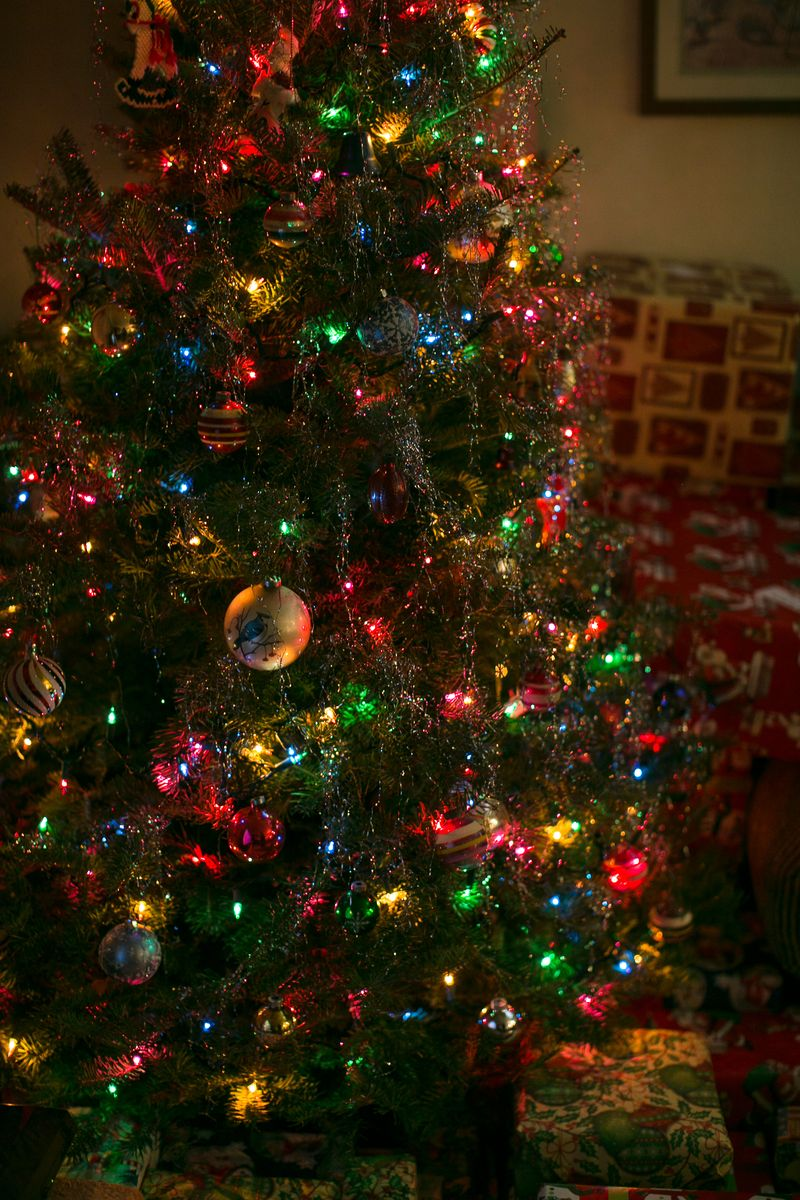 Christmas Eve 2014 -Mom's house-1-4