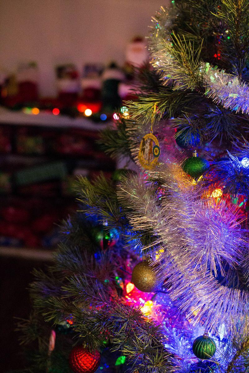 Christmas Day 2015 -1-6