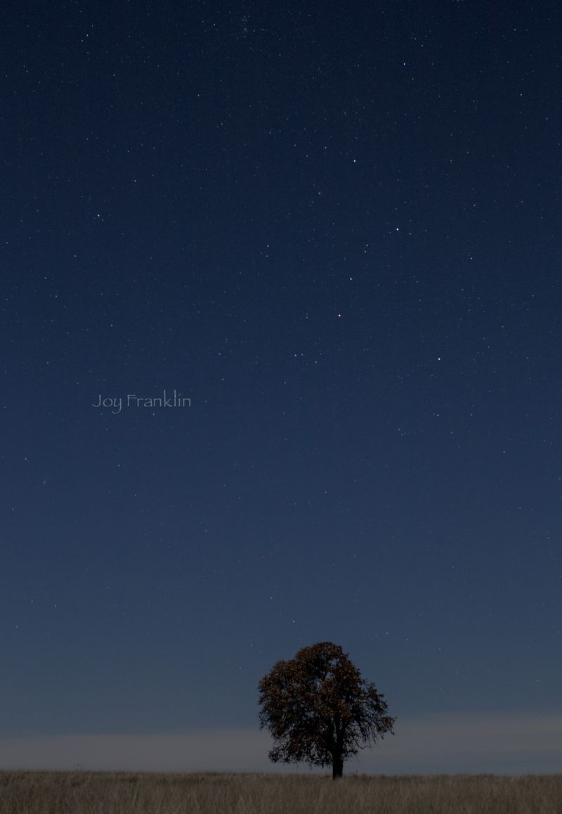The stars and moon -1-3