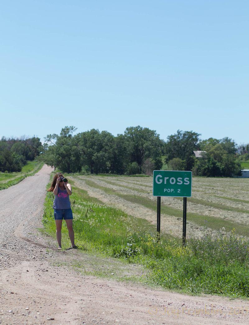 Gross Nebraska -6583