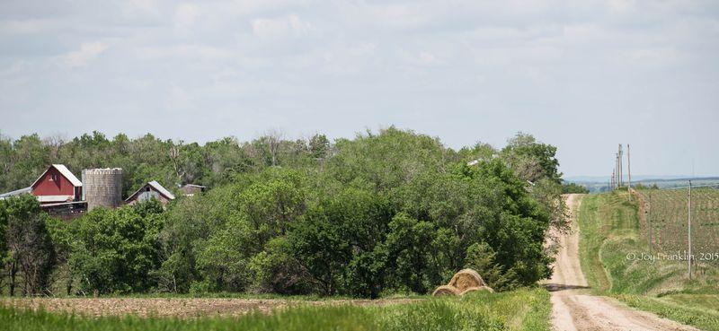 Nebraska Landscapes-2544