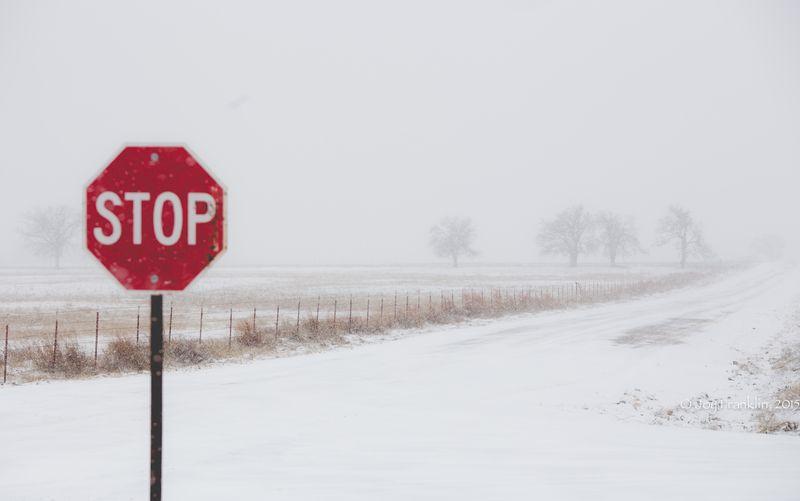 February 27 snow-5866